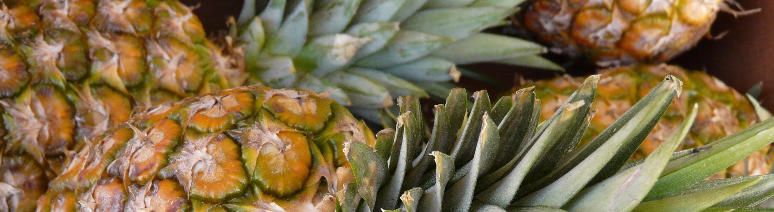importation ananas - La Ferme de la Métairie